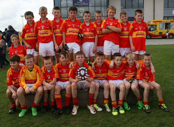 2016 Wexford Under 12 Football Shield Winners